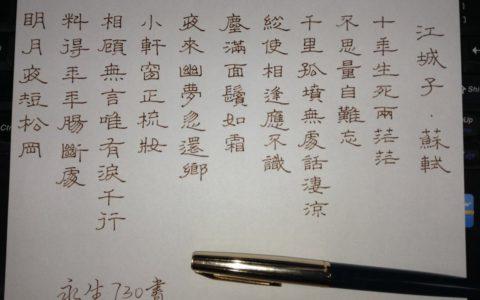 苏轼《江城子》钢笔字笔友习作欣赏