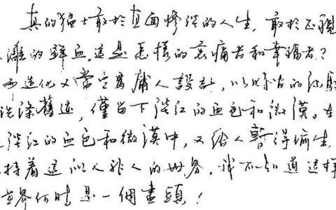 鲁迅《纪念刘和珍君》选段钢笔字笔友习作欣赏