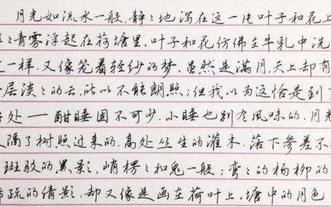 朱自清《荷塘月色》选段钢笔字笔友习作欣赏