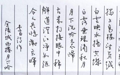 李白《金陵城西楼月下吟》钢笔字笔友习作欣赏