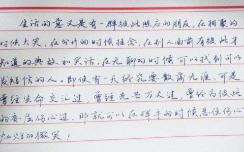 《生活的意义》钢笔字笔友习作欣赏