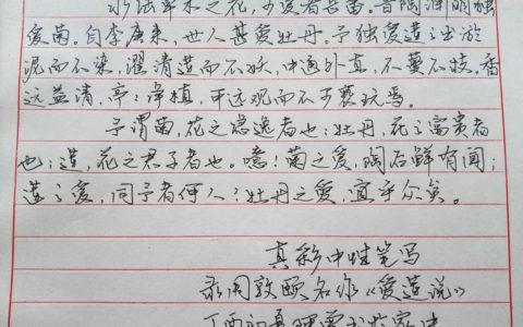 周敦颐《爱莲说》钢笔字笔友习作欣赏