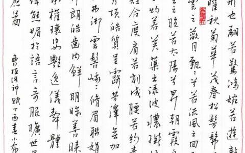 曹植《洛神赋》钢笔字笔友习作欣赏