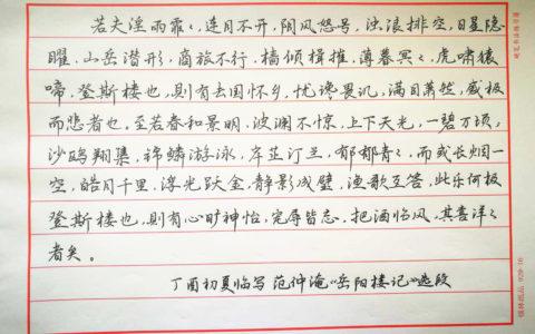 范仲淹《岳阳楼记》钢笔字笔友习作欣赏