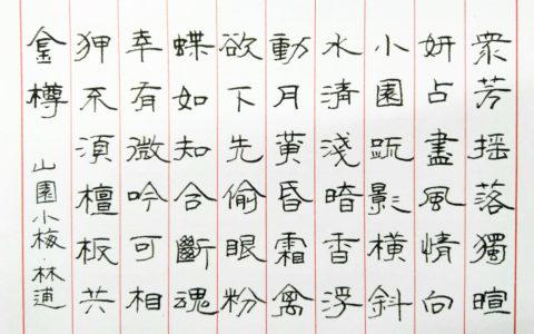 林逋《山园小梅》手写钢笔字笔友钢笔书法习作欣赏