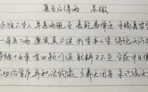苏辙《夏至后得雨》手写钢笔字笔友钢笔书法习作欣赏