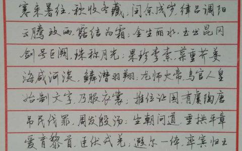 《千字文》手写钢笔字笔友钢笔书法习作欣赏