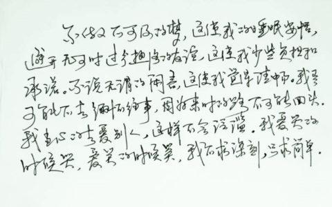 三毛散文语录手写钢笔字笔友钢笔书法习作欣赏