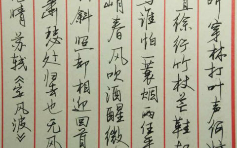 苏轼《定风波》手写钢笔字笔友钢笔书法习作欣赏