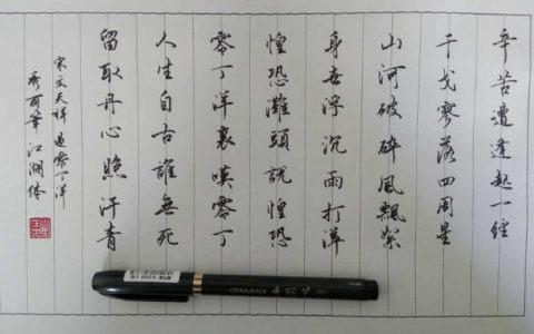文天祥《过零丁洋》手写钢笔字笔友钢笔书法习作欣赏