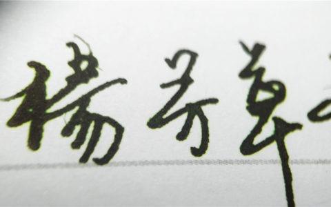 鲶鱼彩色墨水飞虎队齐瓦戈钢笔彩墨试色评测