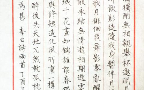 李白《月下独酌》手写钢笔字笔友钢笔书法习作欣赏