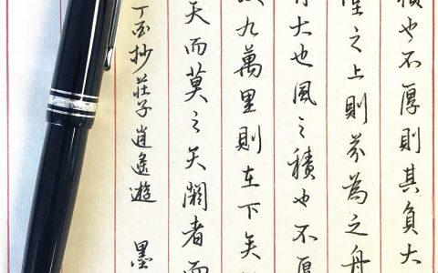 庄子《逍遥游》手写钢笔字笔友钢笔书法习作欣赏