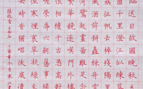 王安石《桂枝香》手写钢笔字抄诗词笔友钢笔书法习作欣赏
