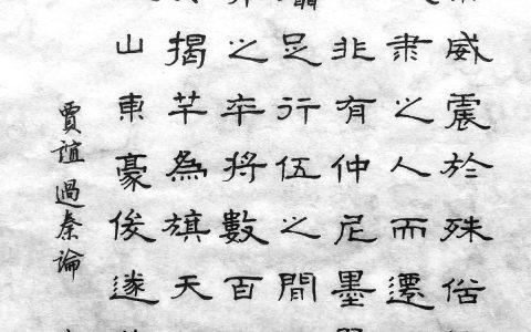 贾谊《过秦论》手写钢笔字笔友钢笔书法写作欣赏