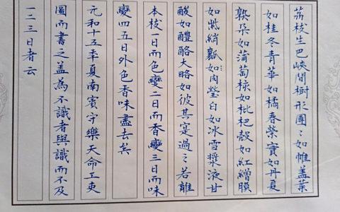 白居易《荔枝图序》手写钢笔字笔友钢笔书法习作欣赏