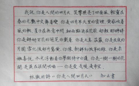 林徽因《你是人间四月天》钢笔字手写笔友钢笔书法习作欣赏
