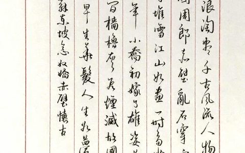 苏轼《念奴娇》手写钢笔字练习笔友钢笔书法习作欣赏