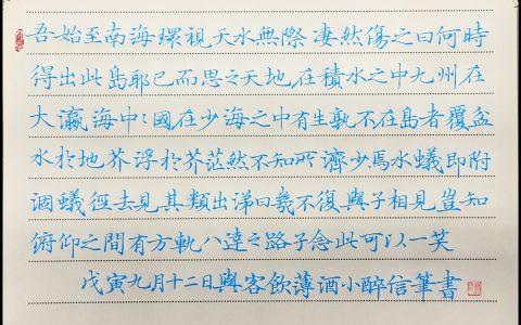 苏轼《在儋耳书》手写钢笔字练习笔友钢笔书法习作欣赏