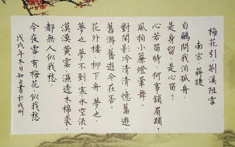 蒋捷《梅花引·荆溪阻雪》手写钢笔字练习笔友钢笔书法习作欣赏