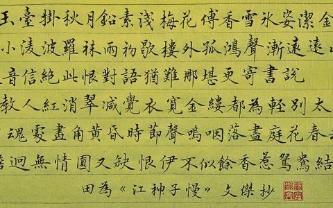 田为《江神子慢》手写钢笔字练习笔友钢笔书法习作欣赏