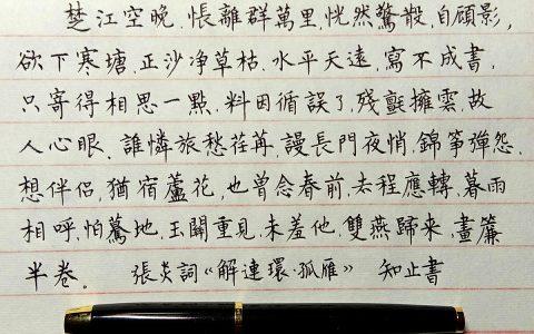 张炎《解连环》手写钢笔字练习笔友钢笔书法习作欣赏