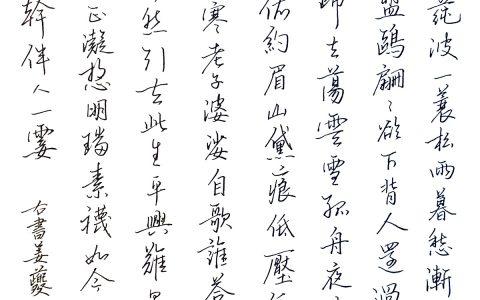 姜夔《庆春宫》每周一篇钢笔字练习笔友钢笔书法习作欣赏