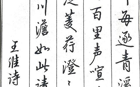 王维《清溪》每周一篇钢笔字练习笔友钢笔书法习作欣赏