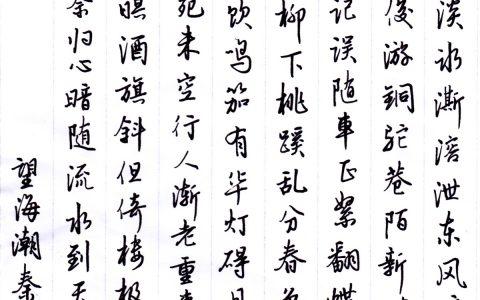 秦观《望海潮》每周一篇钢笔字练习笔友钢笔书法习作欣赏
