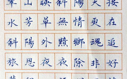 范仲淹《苏幕遮》每周一篇钢笔字练习笔友钢笔书法习作欣赏