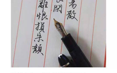 王沂孙《眉妩新月》每周一篇钢笔字练习笔友钢笔书法习作欣赏