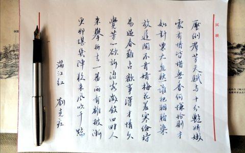 刘克庄《满江红》每周一篇钢笔字练习笔友钢笔书法习作欣赏