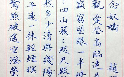 赵师侠《念奴娇》每周一篇钢笔字练习笔友钢笔书法习作欣赏