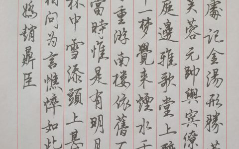 赵鼎臣《念奴娇》每周一篇钢笔字打卡练习钢笔书法习作欣赏