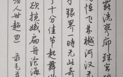 毛幵《念奴娇》每周一篇钢笔字练字打卡作业欣赏