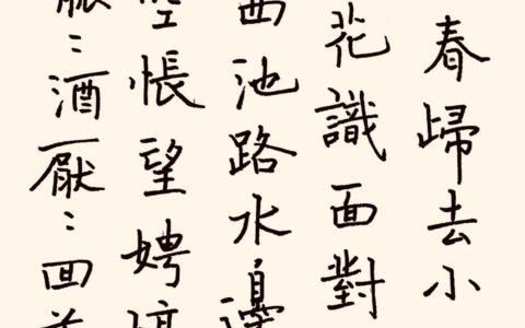 张震《蓦山溪》钢笔字练字打卡作业欣赏