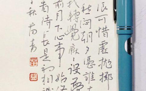 柳永《征部乐》钢笔字练字打卡习作欣赏